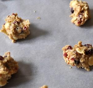 cookie-piskoti-brusnice