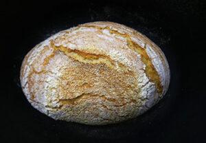 koruzni-kruh-droži
