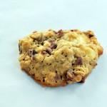 piskoti-brusnice-cookies